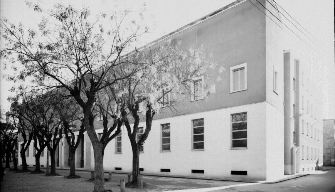 Palazzo Liviano alla sua realizzazione