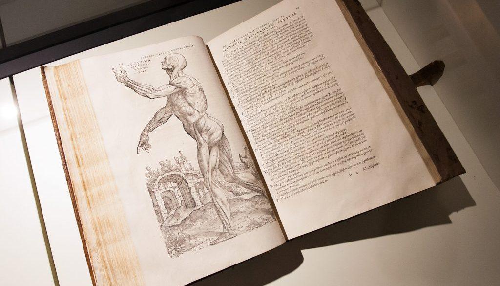 De humani corsporis fabrica di Vesalio