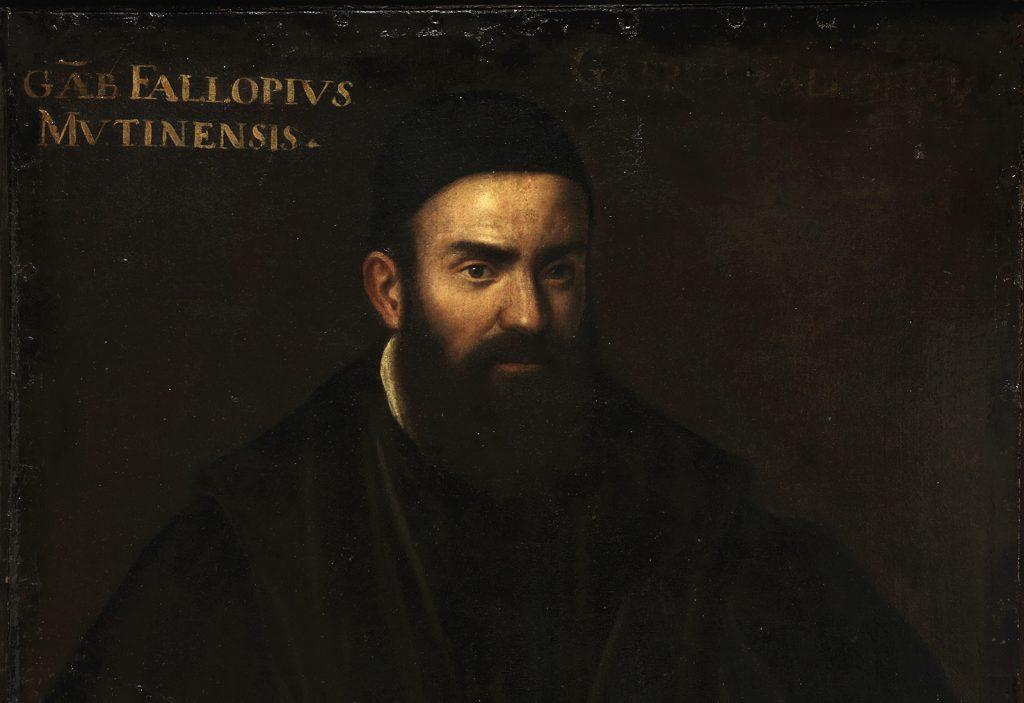Gabriele Falloppio, olio su tela