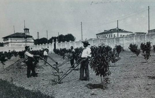 1926, Orto agrario al Portello