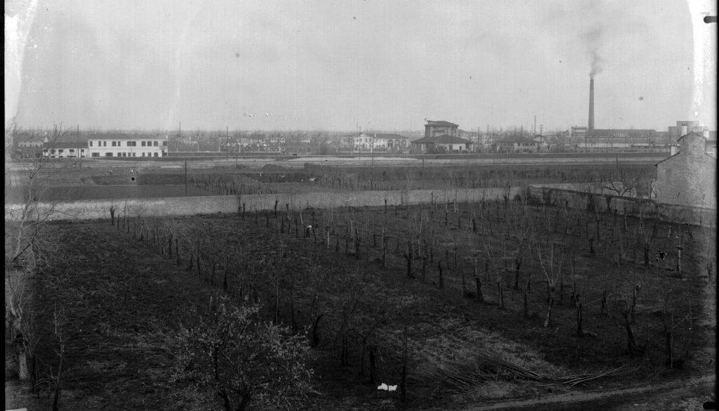 Orto agrario al Portello 1956