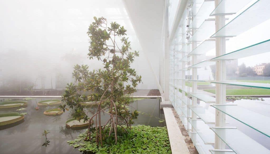 Giardino della biodiversità, serre interne