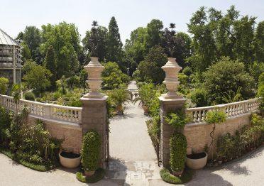 Orto Botanico, foto di Massimo Pistore